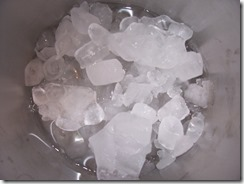 Bucket_of_Ice